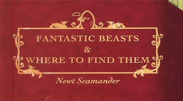 Fantastic Beasts and Where to Find Them turkishplayer